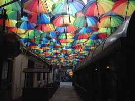 umbreluțe