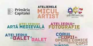 """Atelierele """"Micul Artist"""""""