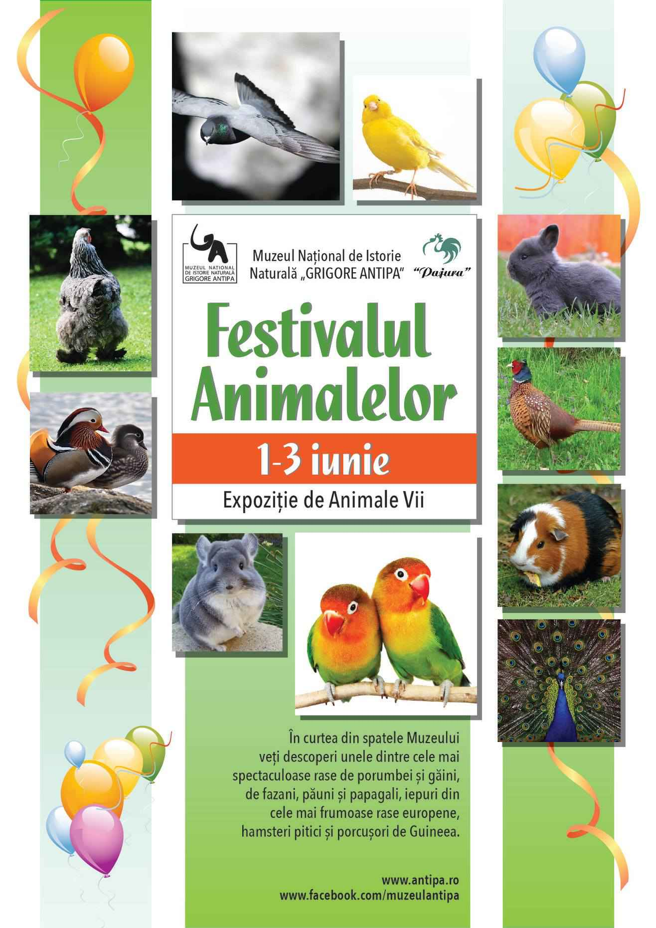 """FESTIVALUL ANIMALELOR la Muzeul Național de Istorie Naturală """"Grigore Antipa"""""""