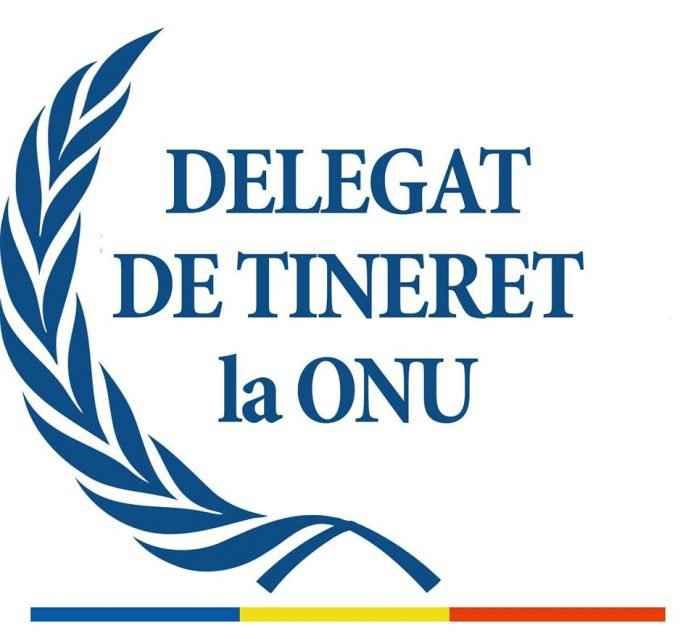 Delegat de Tineret la Națiunile unite
