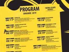 Teatrul de Artă program afis