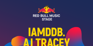 afis Red Bull Music Summer Well Festival