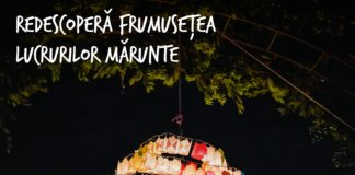 Festivalul Luminii 2019 afis
