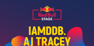 RED BULL STAGE afis