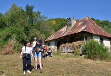 Arhitectura tradițională afiș
