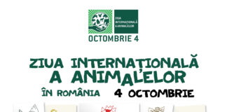Ziua Internationala a Animalelor afiș