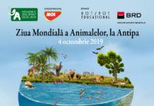 Ziua Mondială a Animalelor afiș