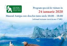 rogramul special de vizitare al Muzeului Antipa afiș