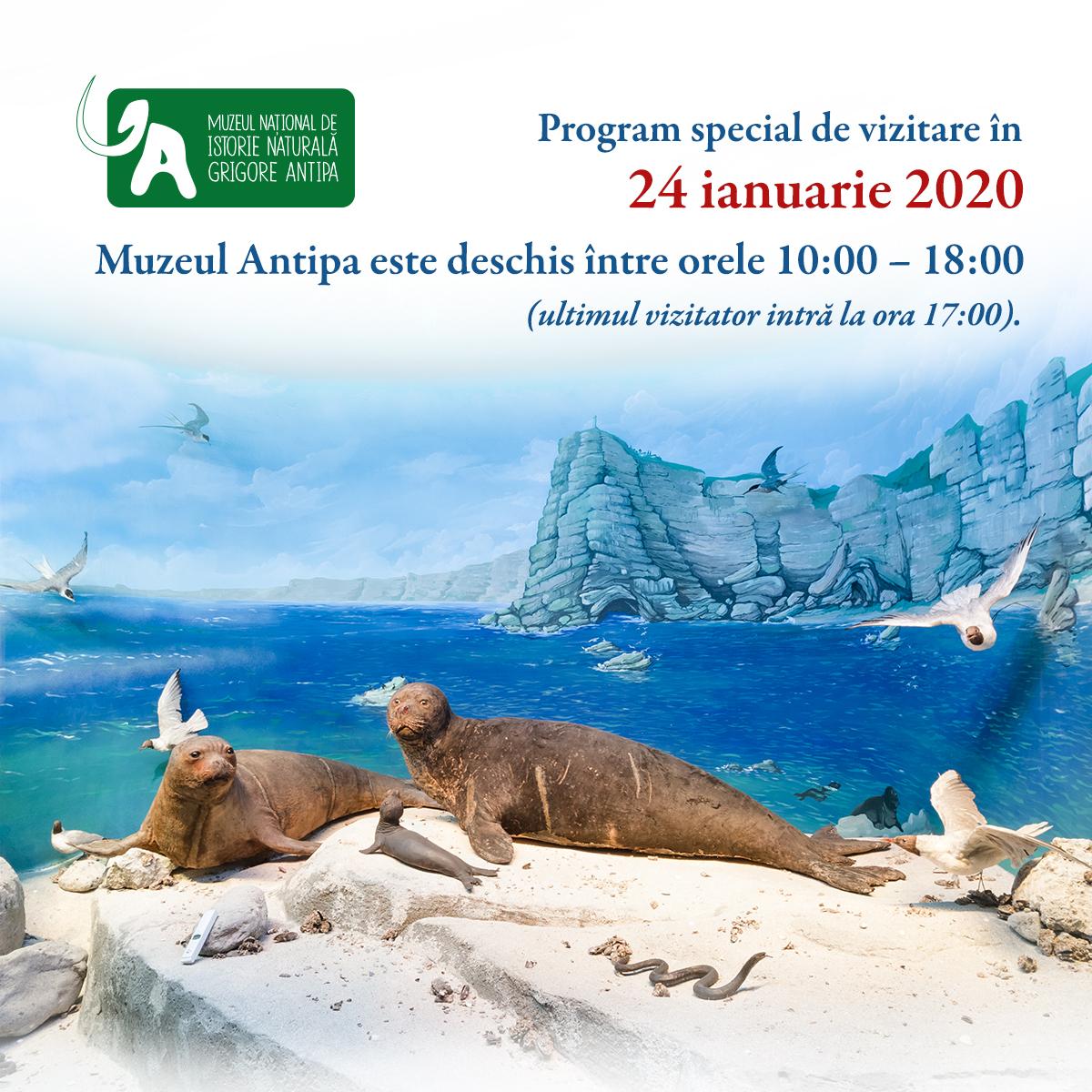 Imagini pentru Programul special de vizitare al Muzeului Antipa vineri, 24 ianuarie 2020