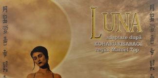 afiș spectacol Luna